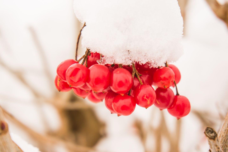 Weg met de winterdip 7 natuurlijke tips voor meer energie